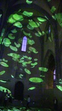 Avignon 2014 Anne-Marie Pécheur Artiste Peinture et Lumière 14CELES