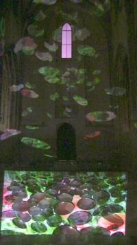 Avignon 2014 Anne-Marie Pécheur Artiste Peinture et Lumière IMG 0117