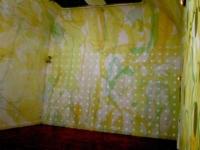 Mimosas 2006 Anne-Marie Pécheur Artiste Peinture et Lumière DSCF1224