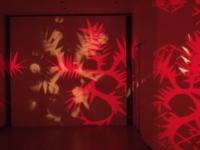 Remparts 2011 Anne-Marie Pécheur Artiste Peinture et Lumière 11bis