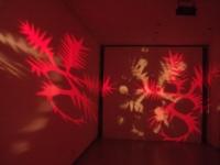 Remparts 2011 Anne-Marie Pécheur Artiste Peinture et Lumière DSCF1119