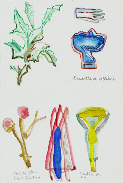 Anne-Marie Pécheur Artiste Peinture et Lumière Riegl Collioure Aquarelles